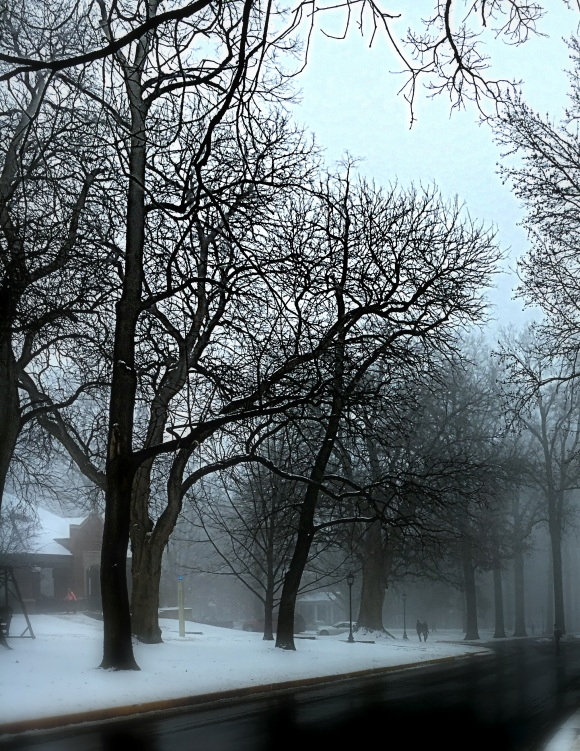 fog-kristine-wagner